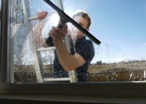 Professional Window Cleaner